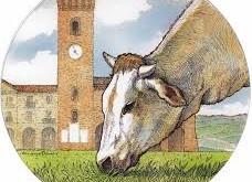bue-grasso-Nizza-Monferrato